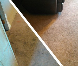 Carpet Cleaning, Butte, MT
